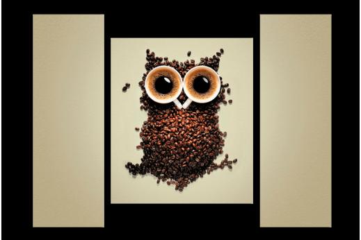 Модульная картина Сова из кофе